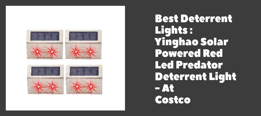 Best Deterrent Lights : Yinghao Solar Powered Red Led Predator Deterrent Light - At Costco